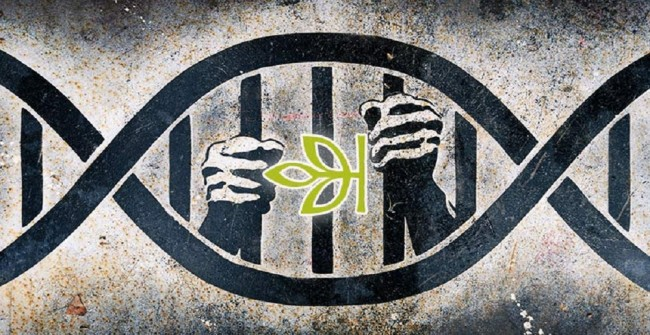 ancestry_com-giving-private-DNA-data-to-police
