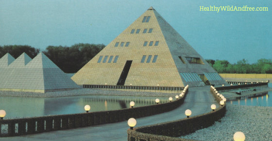 This Man Built A Gold Pyramid Home in Illinois and You Won't Believe What Happened Next