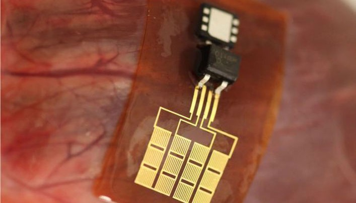Scientist Believes the Human Microchip Will Become Not Optional