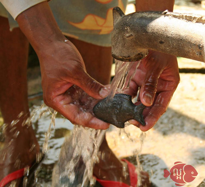 This 25 iron fish is saving the lives of millions and it for Iron in fish