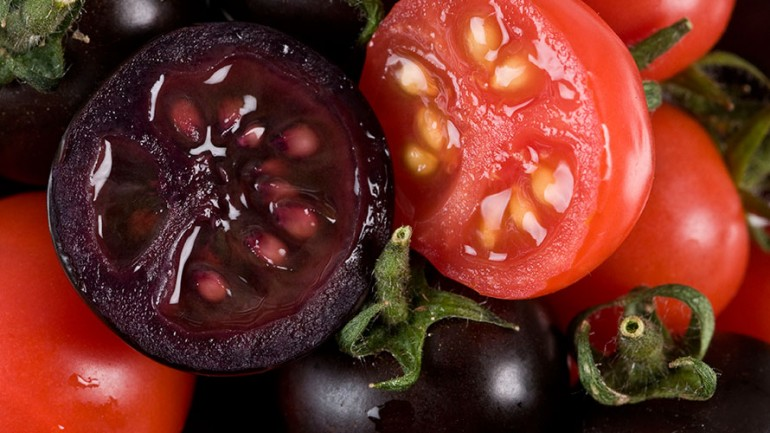 Monsanto Tries to Patent & Control Natural, Non-GMO Tomatoes‏