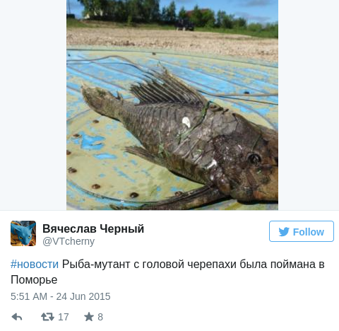 Russian fishermen catch monster fish with reptile head and fossilized scales — RT News