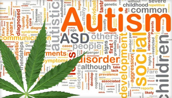 Could Cannabis Be The Answer For Autism ?