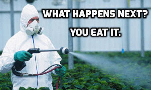 EPA Hid tTruth About Glyphosate and Cancer For Decades To Protect Monsanto's Corporate Profits