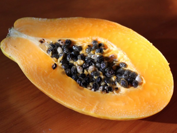 papaya-seeds