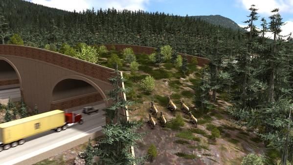 This New Green Overpass Will Allow Wildlife To Safely Cross Interstates