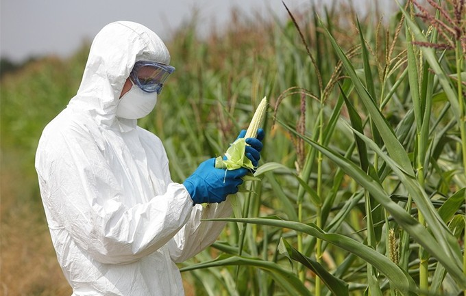 Russia Says NO to GMO Seeds; Aims For Food Supply That's Cleanest in The World
