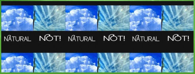 global-march-against-chemtrails-header-2