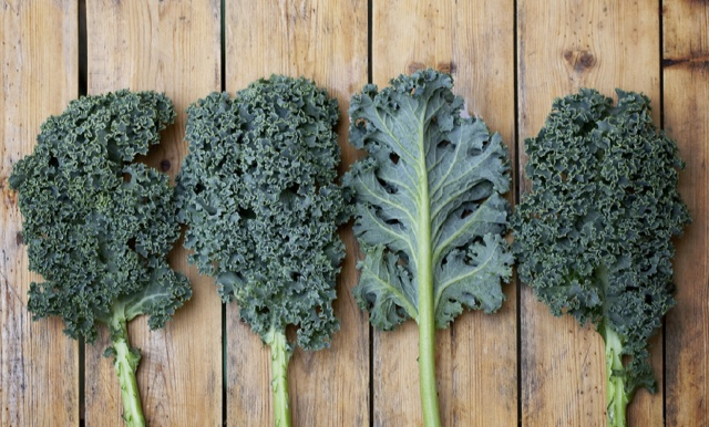 People Are Getting Sick From Eating Kale … Is Super Food Poison?