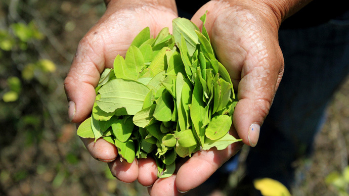 Pope Francis To Chew Coca Leaves During Visit To Bolivia