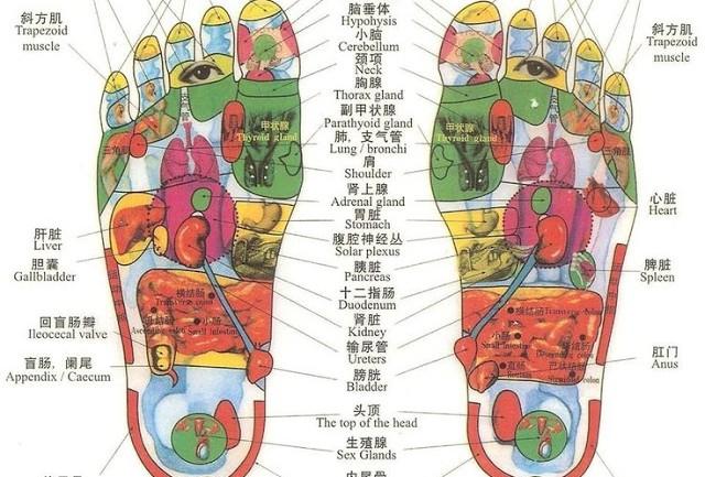Walk Barefoot In Order To Heal Vital Organs
