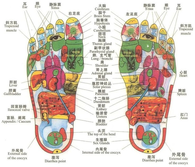 walk-barefoot-in-order-to-heal-vital-organs