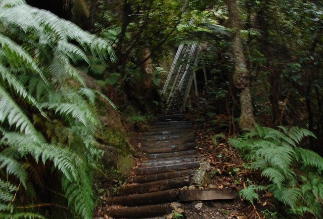 Stunning Staircases Built Into Nature