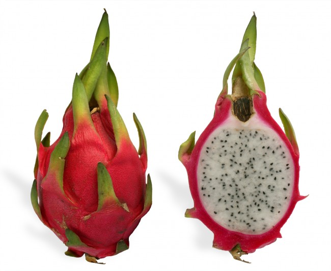 Pitaya_cross_section_ed2
