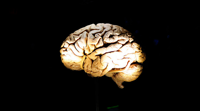 Russian Scientists Create Artificial Brain That Can Educate Itself