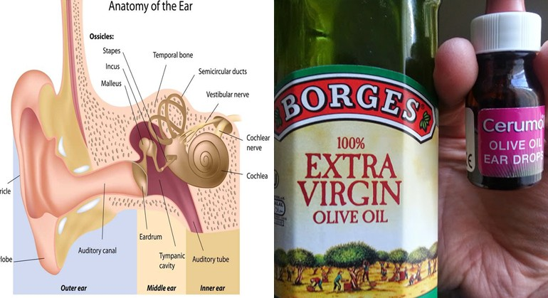 The Facts About Earwax And Whe You'll Never Clean Your Ears Again