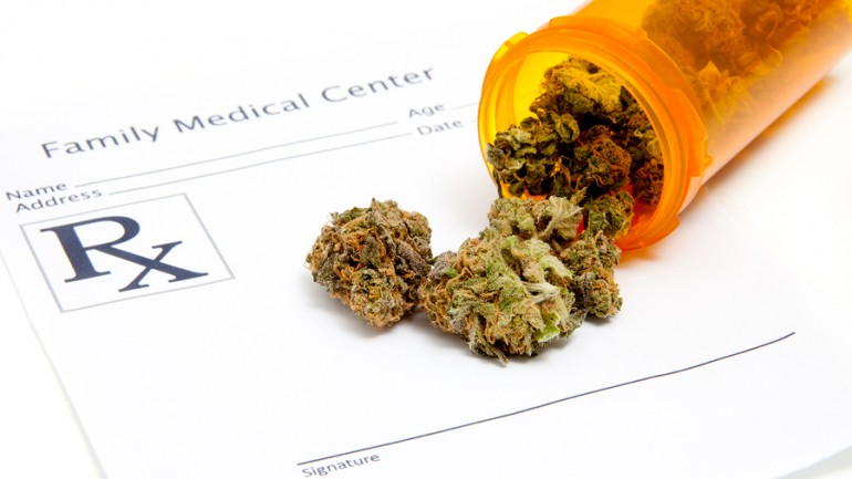 National Cancer Institute Admits Cannabis Use Causes 45% Reduction in Bladder, Breast and Liver Cancer