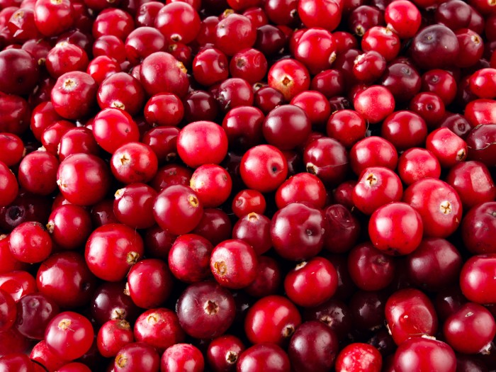 cranberries-shutterstock_155418920