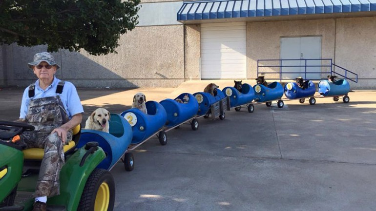 80 Year Old Man Builds A Dog Train To Take Rescued Stray Dogs On Adventures