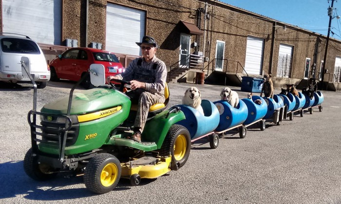 rescued-dog-train-tractor-stray-eugene-bostick-7