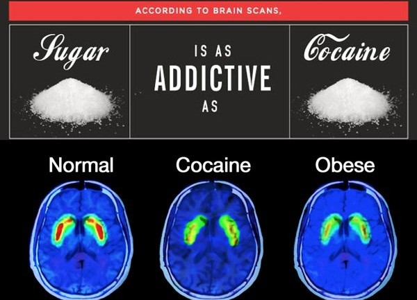 STUDIES SHOW THAT SUGAR IS MORE ADDICTIVE THAN COCAINE