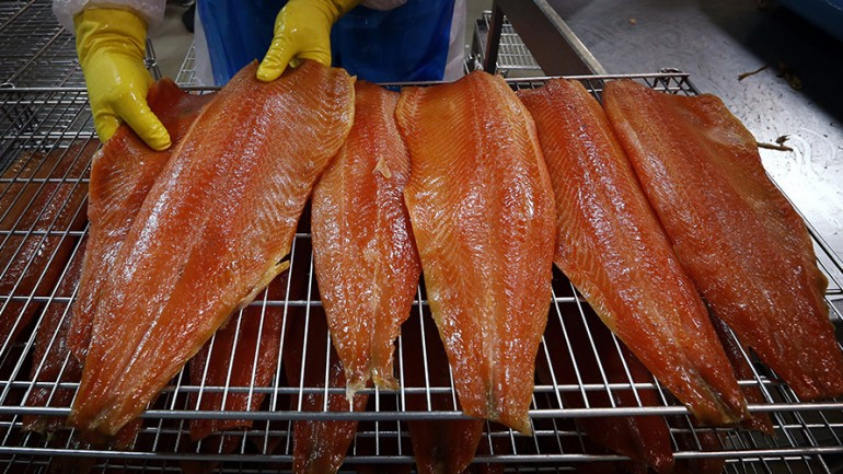 'Frankenfish' GMO Salmon Declared Safe To Eat by FDA