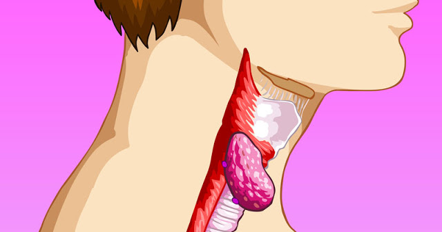 thyroid-health