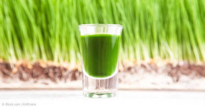 wheatgrass-juice-fb