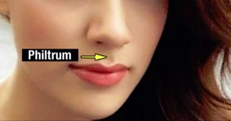 This Is Why We Have That Groove Between Our Nose And The Top Lip