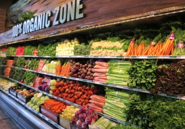 RUSSIA TO BECOME WORLD'S LARGEST SUPPLIER OF ORGANIC FOOD