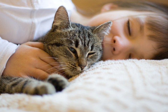 amazing-cats-purring-can-treat-the-following-health-conditions