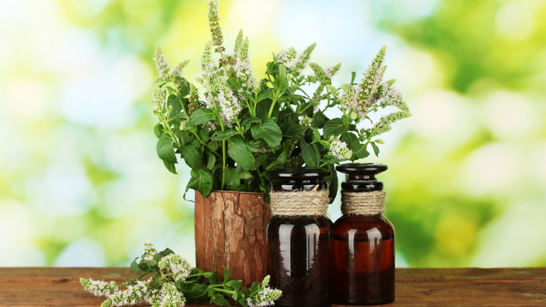 Five Essential Oils Proven To Fight Cancer