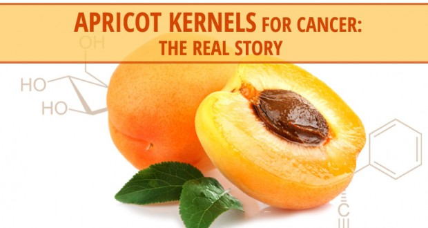 Apricot Kernels For Cancer: The Real Story