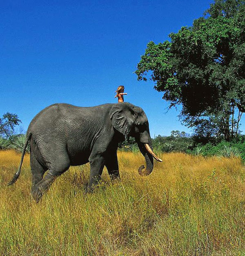 Breathtaking-Photos-Of-A-Little-Girl-Tippi-Growing-Up-Alongside-Wild-Animals-in-Southern-Africa13