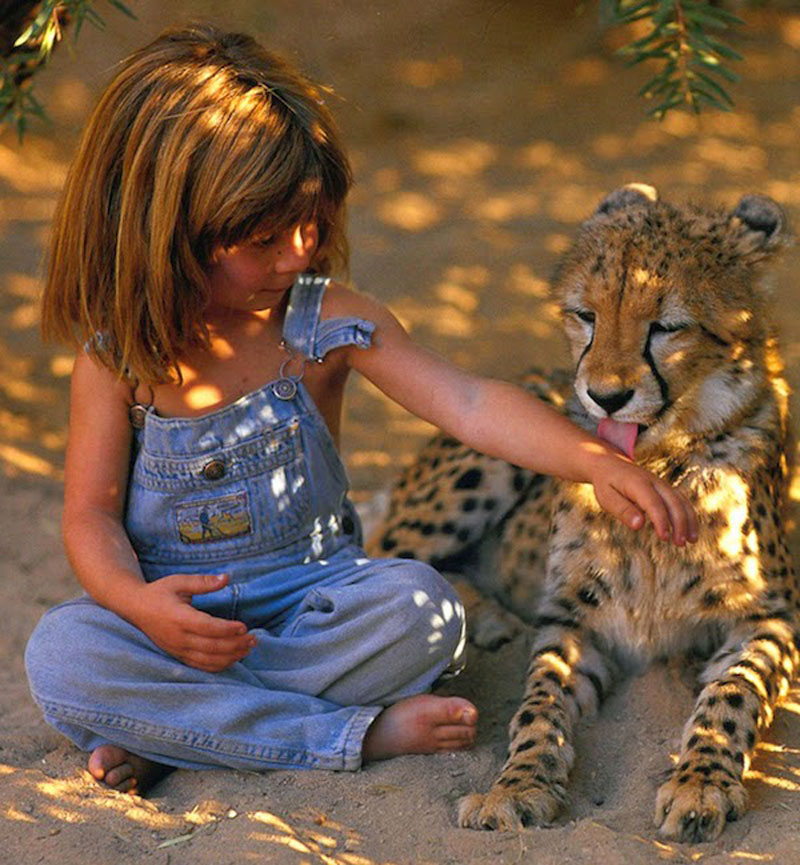 Breathtaking-Photos-Of-A-Little-Girl-Tippi-Growing-Up-Alongside-Wild-Animals-in-Southern-Africa3