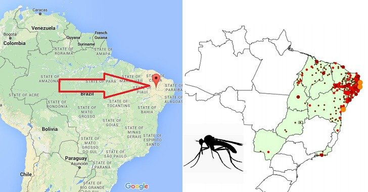 Zika Outbreak Epicenter in Same Area Where GM Mosquitoes Were Released in 2015‏