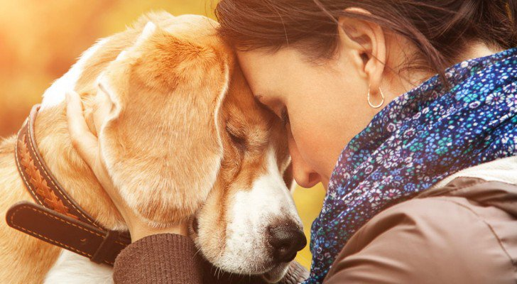 Study Finds Dogs Can Actually Read Human Emotions & Show Empathy