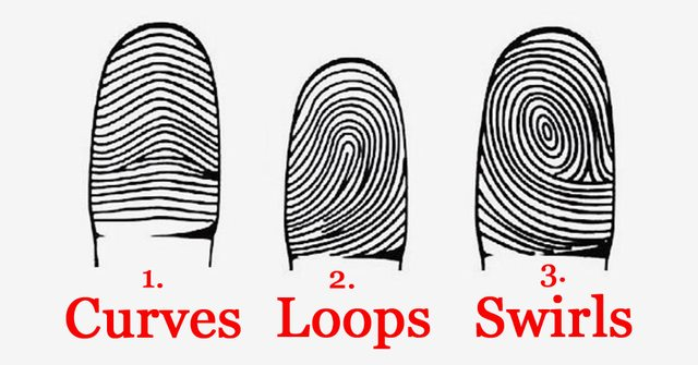 Here's What Your Fingerprints Reveal About Your Personality