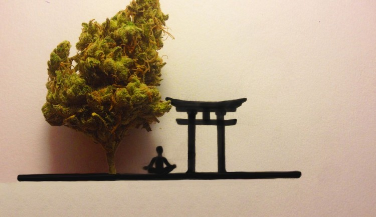 Marijuana And Meditation: I Quit Ambien And Found Healthier Ways To Sleep