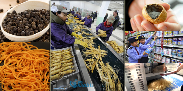 fake-Foods-Made-In-China-696x363-1