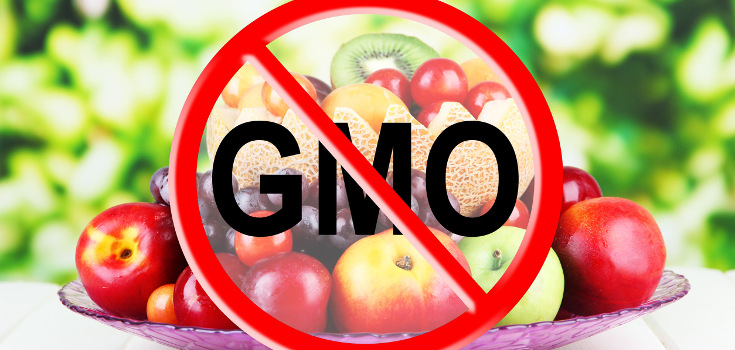 """800 Scientists Demand Global GMO """"Experiment"""" End"""