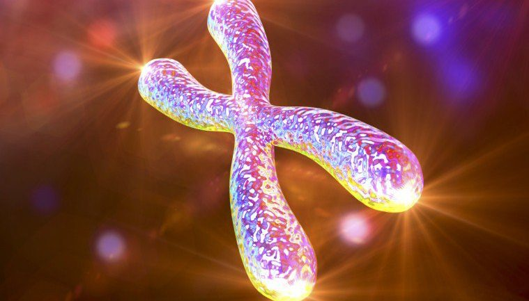 FIRST HUMAN BEING HAS THEIR DNA MANIPULATED TO MAKE WHITE BLOOD CELLS 20 YEARS YOUNGER