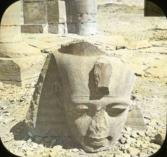 Head of the colossus of Ramses II