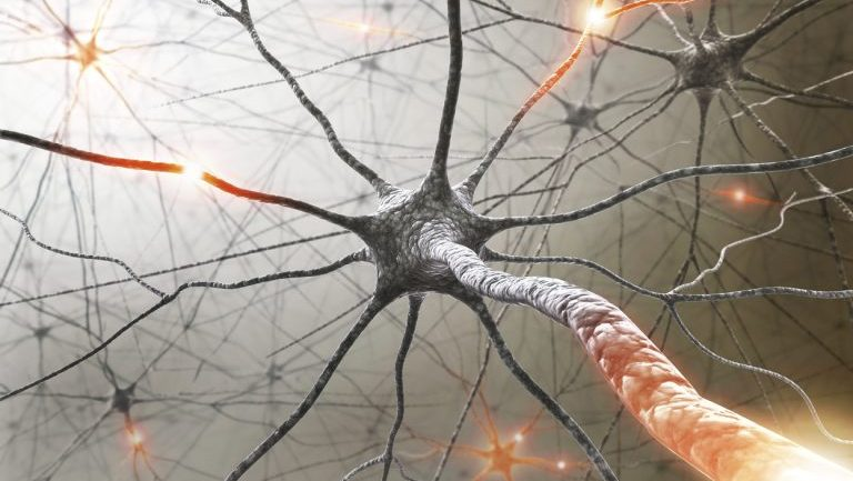 Canadian Doctors Successfully Reverse Severe MS Using Stem Cells