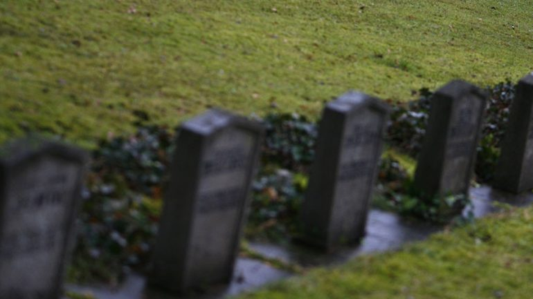 Refugee Rapes 79 Year Old Woman at German Cemetery