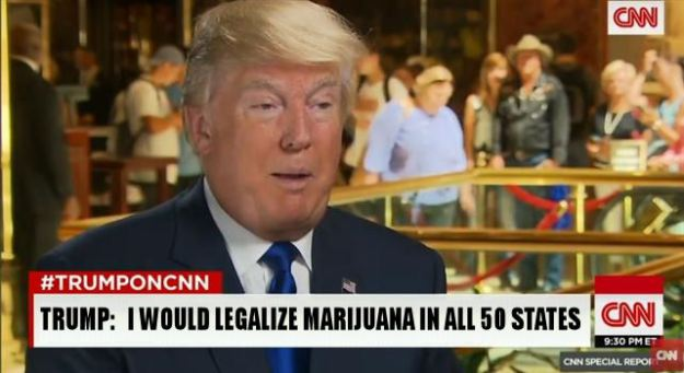 Donald-Trump-Says-He-Will-Legalize-Marijuana-In-All-50-States-If-Elected-President-news-image-photo-picture-1