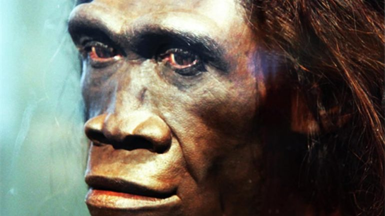 Scientists Say A Mystery Species Bred with Ancient Humans in Distant Past