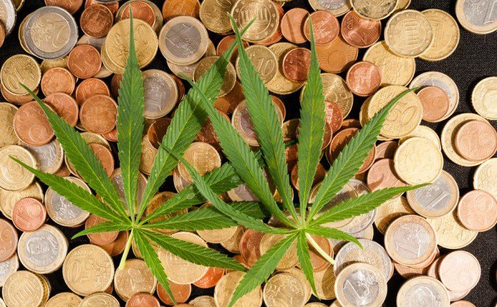 Smoking Pot Changes the Way You Look at Money, Study Finds