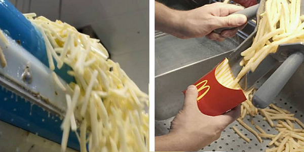 If You Knew What's In McDonald's Fries You'd Be Seriously Disgusted And Never Eat Them Again