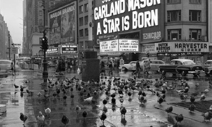 Photographs Of Everyday Life in 1950's New York City Discovered In An Attic 45 Years Later